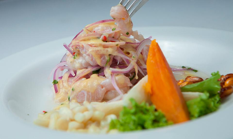 Peru Gastronomy ceviche